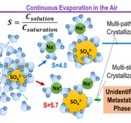 Jonghyun Lee: Complex crystallization of an evaporating SS solution observed in the preliminary experiments. The solution electrostatic levitator developed by the PI enables reaching unprecedentedly deep supersaturation where severe water deficiency polarizes and polymerizes SS ion-water molecule clusters, and alters the crystallization pathway resulting in different crystal structures. This research will unveil how such a structural change affects the crystallization behavior and the final crystalstructure.