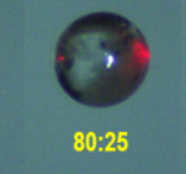 A levitated sodium sulfate solution droplet evaporates to crystallization at S=6.0. Initial size (left) decreased by evaporation. Crystal rafts can be noticed in the second picture. The numbers on the images are time elapsed (min:sec) since levitation (the leftmost image).